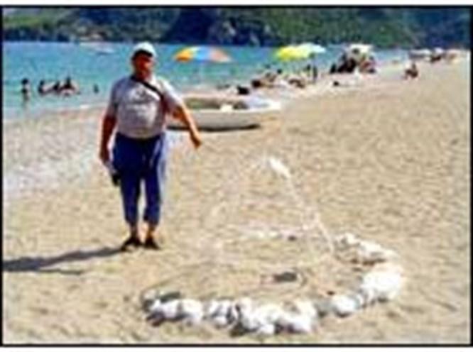 6 bin 500 Caretta caretta denize
